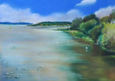 131i-2018 l'étang de FEINS