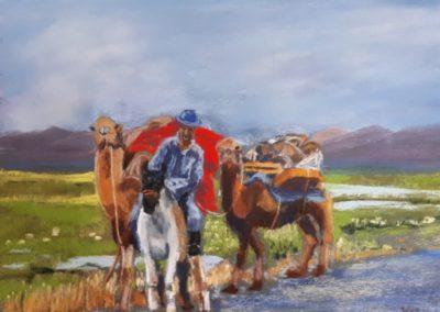 160i-2019 les chameaux de Bactriane