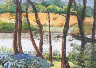 175i-2019 la rivière de Pont l'abbé