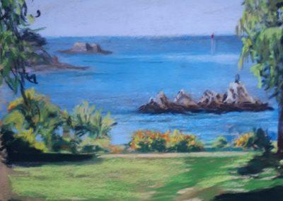 221i-2020 vue sur l'embouchure de la rance du parc de la Briantais